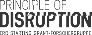 principle-of-disruption